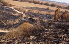 Israelische boeren dienen klacht in tegen Hamas bij Internationaal Strafhof
