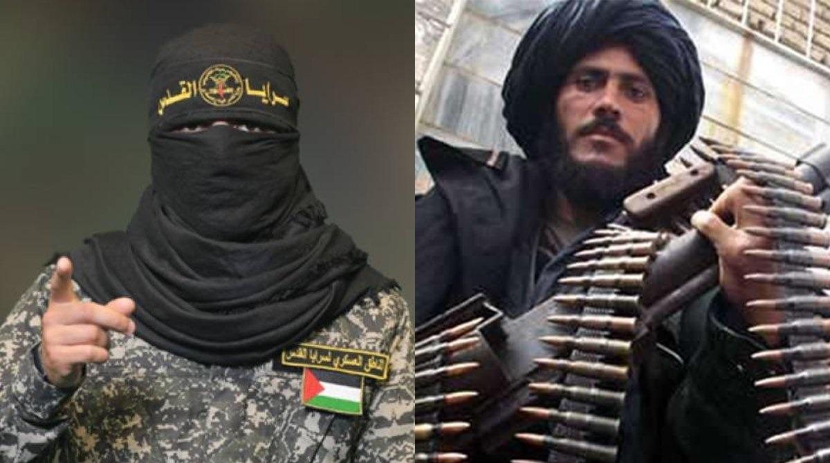 hamas taliban